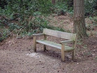 One of the benches installed on the All Ability Trail at High Lodge by FoTF Volunteers